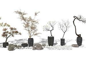 新中式 景观小品盆栽盆景枯树组合SU(草图大师)模型