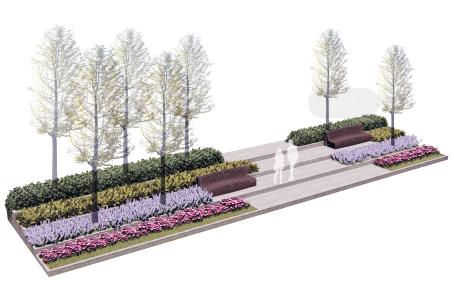 校园台阶景观(1)