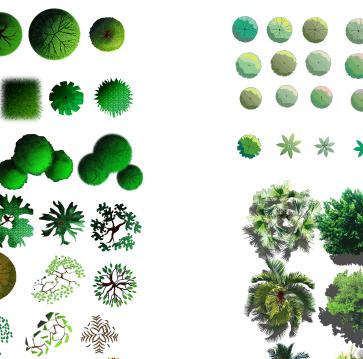 各类植物树种汇集素材psd格式图(5)