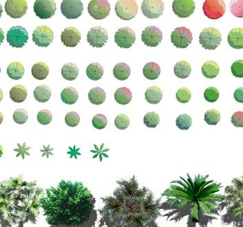 各类植物树种汇集素材psd格式图(4)