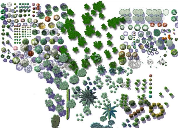 各种类型的植物psd格式素材汇集图(1)