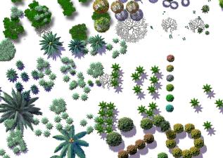 各种类型的植物psd格式素材汇集图(2)