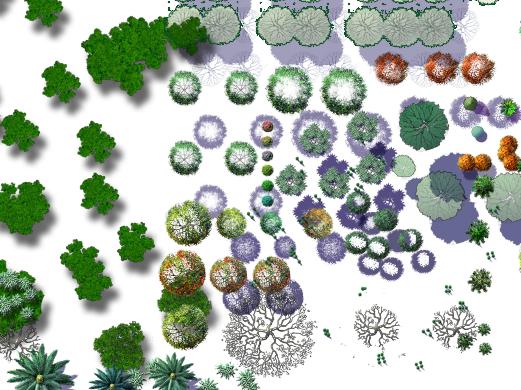 各种类型的植物psd格式素材汇集图(3)