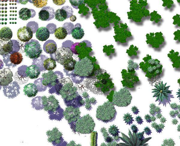 各种类型的植物psd格式素材汇集图(4)