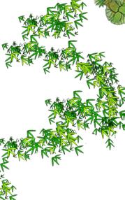 景观节点以及植物素材psd格式汇集(3)