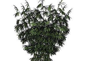 精美的竹子竹堆SU(草图大师)模型4