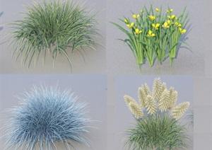 SU(草图大师)代理植物灌木、花草