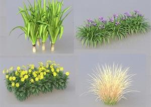 SU(草图大师)代理植物灌木、水生植物