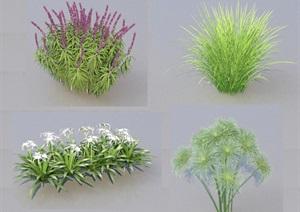 SU(草图大师)代理植物、灌木、常见花草