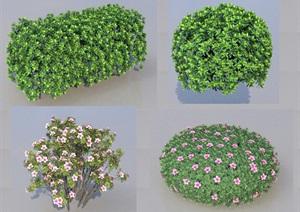 SU(草图大师)代理植物、绿篱、毛娟球