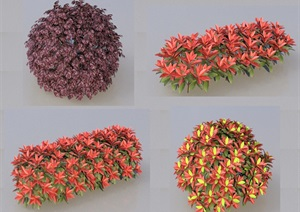 SU(草图大师)代理植物、球、绿篱、红叶石楠