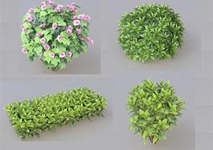 SU(草图大师)代理植物、球、木芙蓉