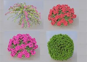 SU(草图大师)代理植物、各种球代理