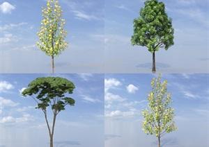 SU(草图大师)代理树、香樟、梧桐树