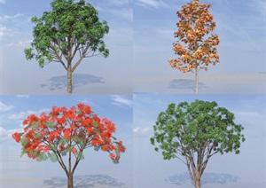 SU(草图大师)代理树、桂花树、凤凰木