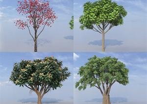 SU(草图大师)代理植物、柿子树、小叶榕树