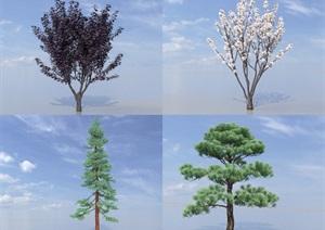 SU(草图大师)植物代理、杉树、松树、紫叶李