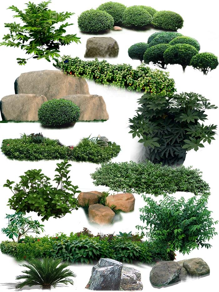 园林景观中灌木色块石头ps素材(4)