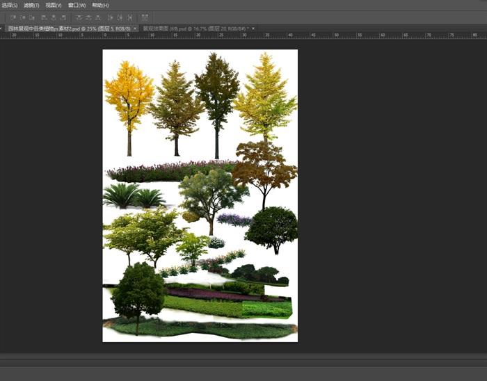 园林景观中各类植物ps素材2(1)