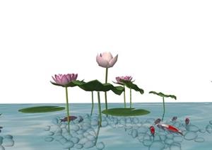 荷花水池魚兒石子水景SU(草圖大師)精品模型