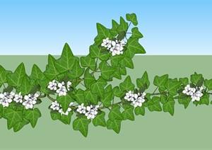 爬藤植物庭院花架SU(草图大师)模型
