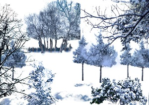 雪景植物园林景观中后期制作素材psd