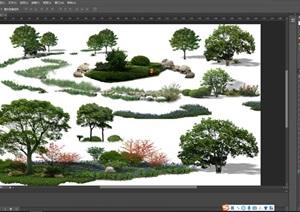 园林景观中各类后期制作植物组景素材psd