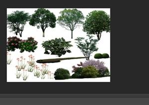 园林景观中植物后期制作素材psd