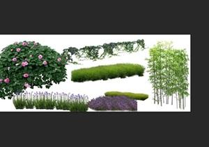 月季花卉竹子景观后期制作素材psd