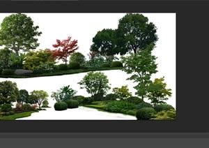 植物花卉组景后期制作素材psd