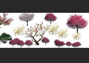 梅花园林景观后期制作素材psd
