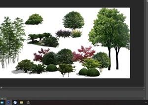 園林景觀中植物后期制作素材psd3