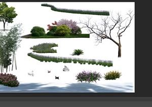 園林景觀中植物后期制作素材psd2