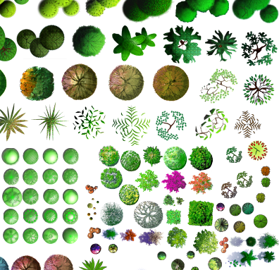 各类植物树种汇集素材psd格式图(2)