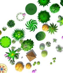 ps作图植物详细素材psd格式图(3)
