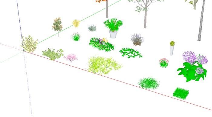 3D灌木、花卉、植被、乔木(2)