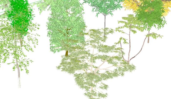 3D灌木、花卉、植被、乔木(3)