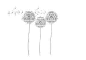 庭院景觀蒲公英燈具SU(草圖大師)模型