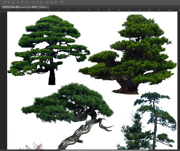植物素材造型树红枫ps素材(2)