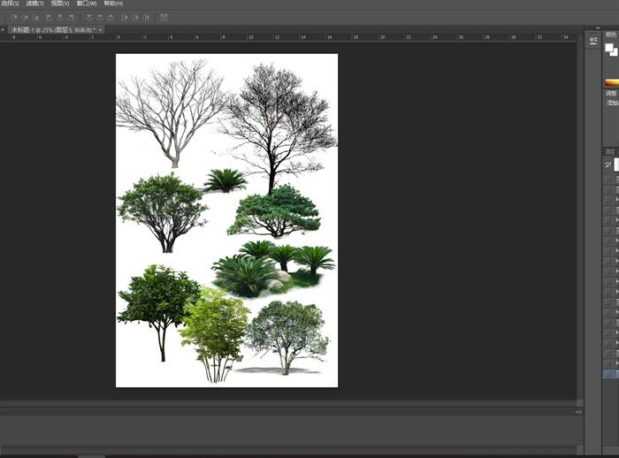 园林景观中各类植物ps素材(2)