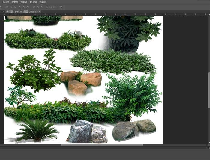 园林景观中灌木色块石头ps素材(2)