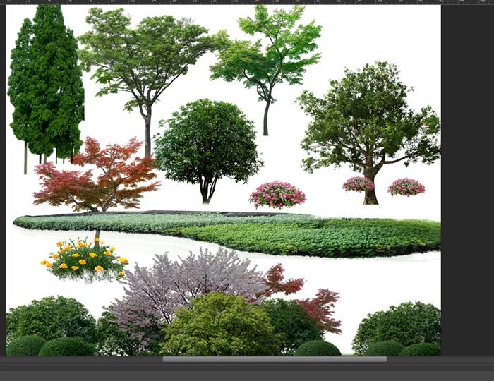 园林景观中乔木色块组景ps素材(2)
