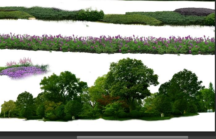 园林景观中乔木色块组景ps素材(3)