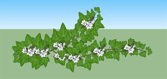 爬藤植物庭院花架su模型(1)