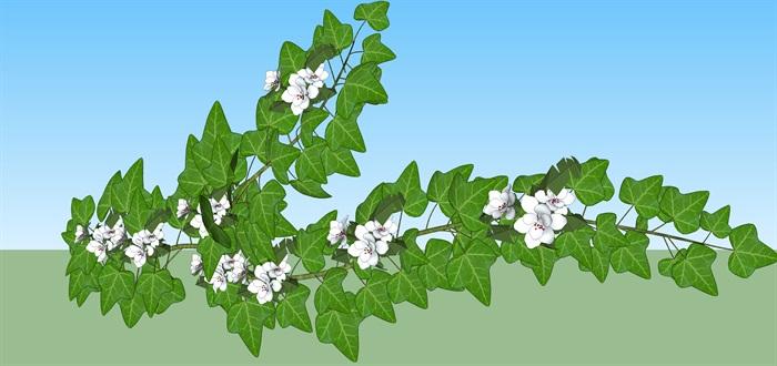 爬藤植物庭院花架su模型(3)