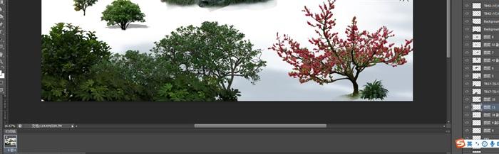 園林景觀中后期制作植物組景梅花psd(1)