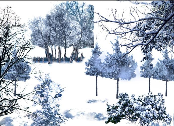 雪景植物園林景觀中后期制作素材psd(1)