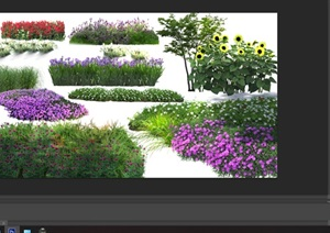 各类植物花卉园林景观后期制作素材psd