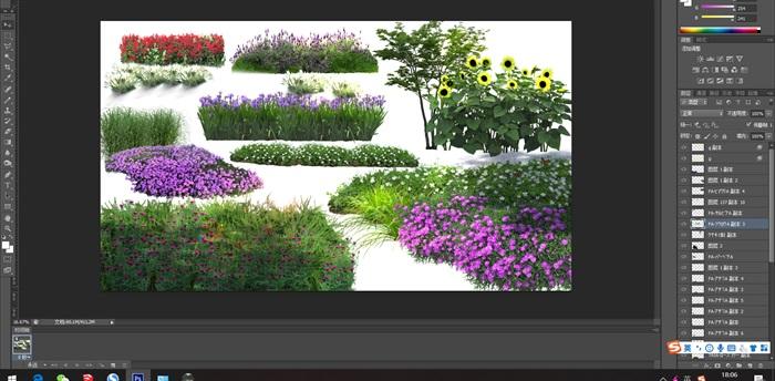 各類植物花卉園林景觀后期制作素材psd(1)