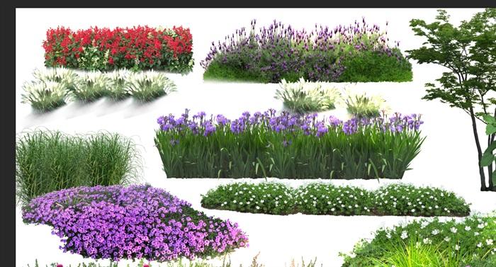 各類植物花卉園林景觀后期制作素材psd(2)